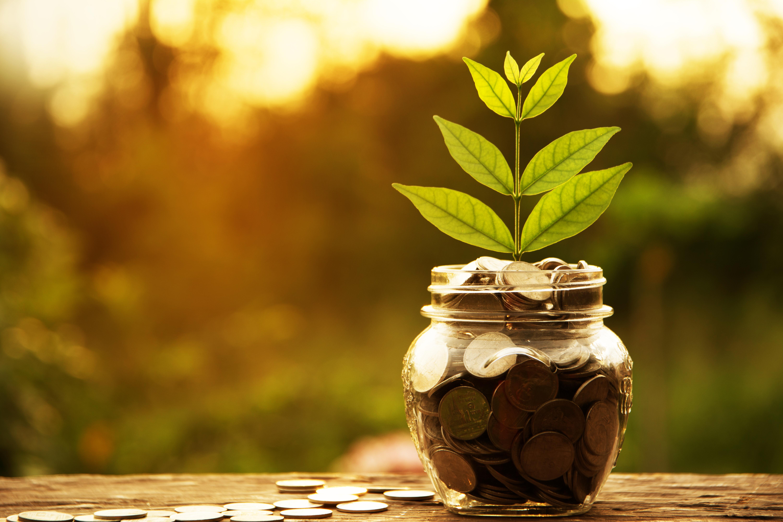 Practical money-saving tips